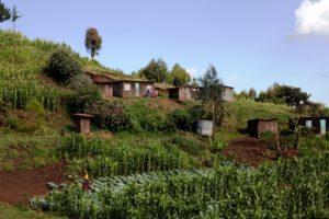 Die Leute, die hier wohnen, leben von dem, was sie um ihre Häuschen herum anbauen. (Quelle: Frank Rothe)