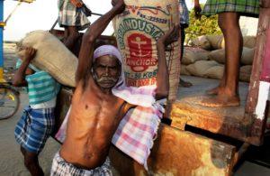 Männer heben Reissäcke von einem Laster. (Quelle: Jens Großmann)