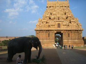 Der Brihadiswara-Tempel in Thanjavur. (Quelle: Susanne Kehr)