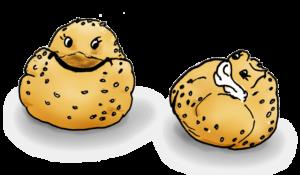 machmit-rezepte-roti